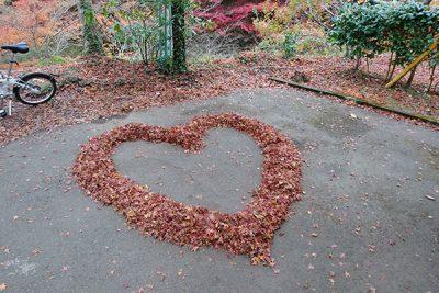 グラデーションで紅葉を楽しむ
